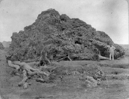 Bukti Nyata Dari Letusan Krakatau 1883