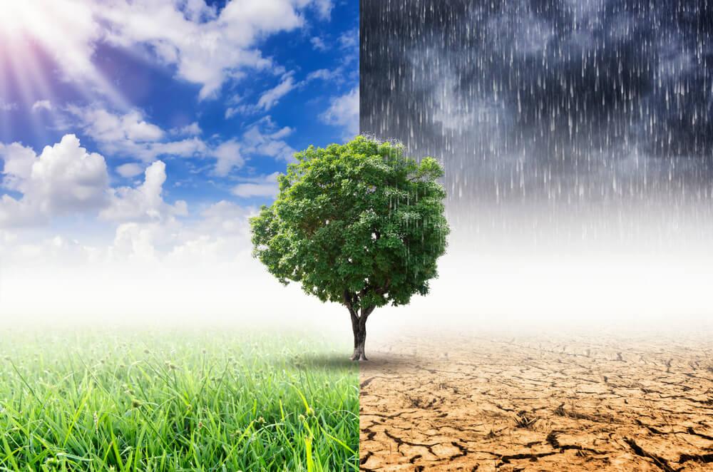 Lebih Dekat Dengan Perubahan Iklim Yuk